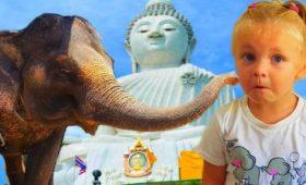 Слоны и Большой Будда